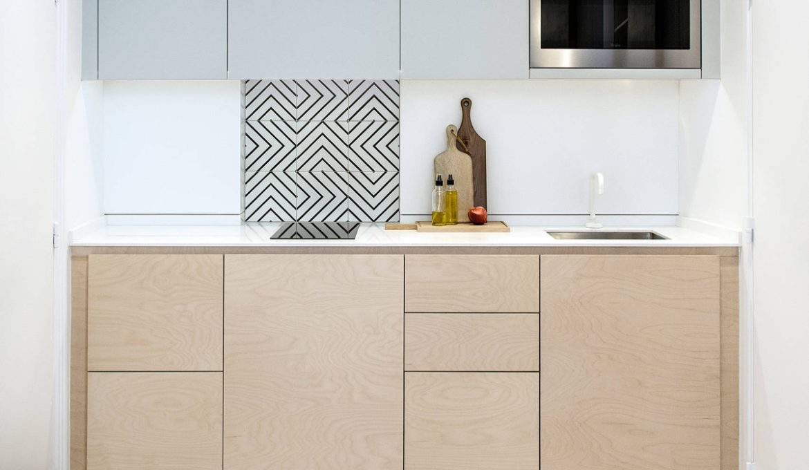 Two-tone-one-wall-kitchen